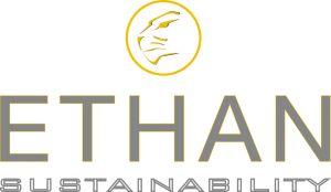 ethan-completo-giallo